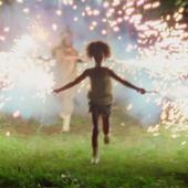 Beast of the Southern Wild